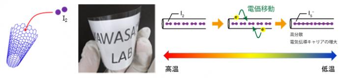 dynamics of molecular iodine.png