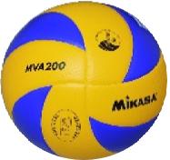 fuji_volleyball.png