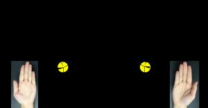 図1_1.png