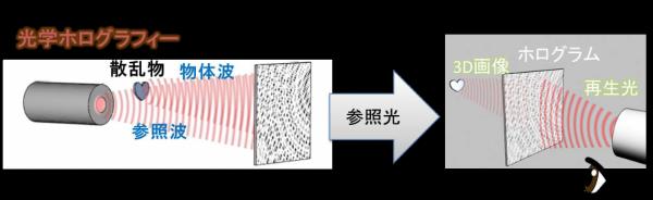 図4 ホログラフィーの原理.png
