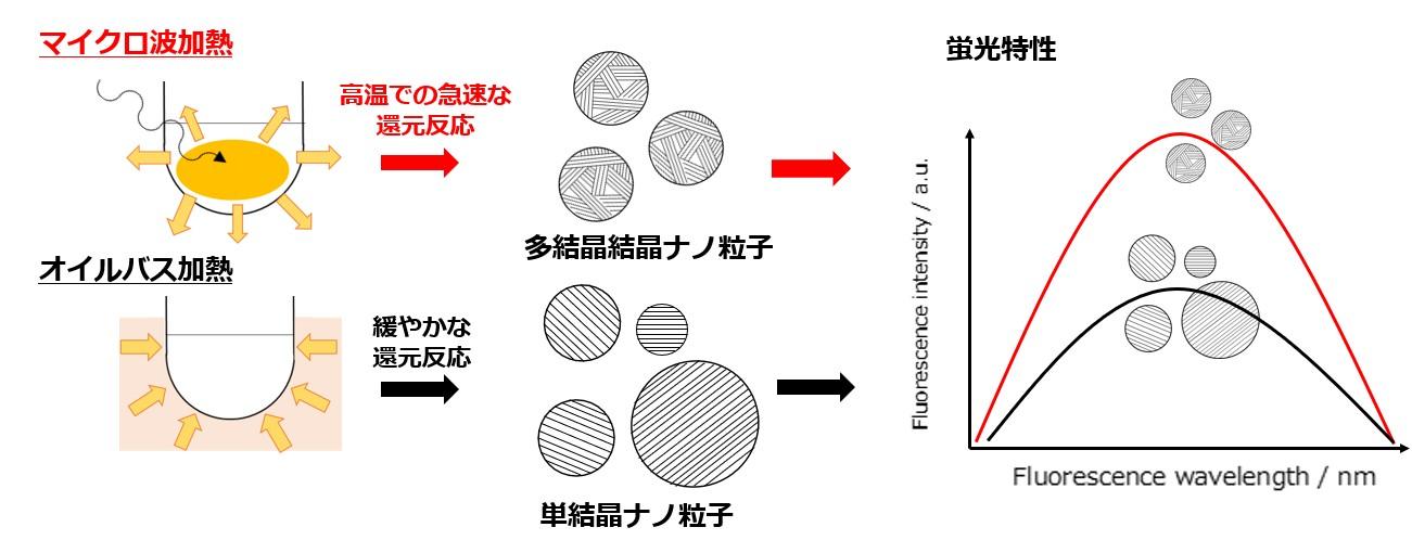 図1(永田).jpg