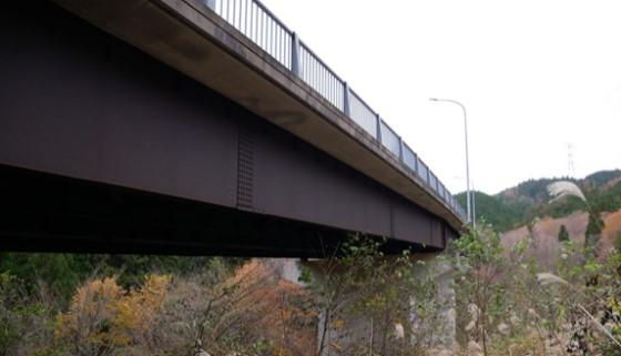 写真-1 計測対象橋梁.jpg