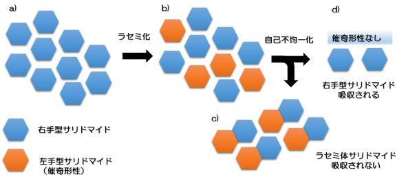 181120shibata3.jpg