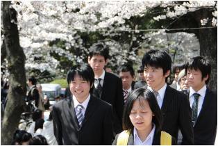 満開の桜と新入生